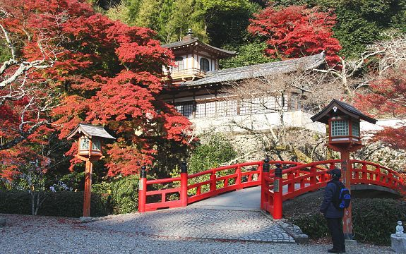 EXPLORE THE ATTRACTIVE FORESTED VALLEY OF MINOO PARK