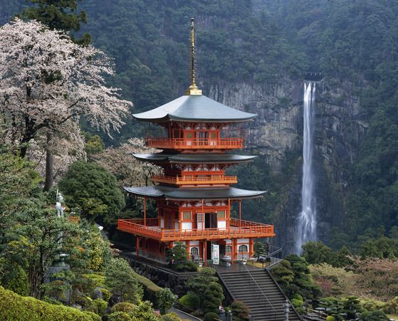 Visit and Discover the Awe-Inspiring Beauty of Nachi Falls